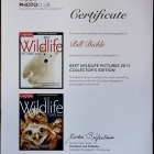 "Bill has been honoured to be included in the Featured ""Special Edition"" Magazine as the Best Wildlife Images for 2011. This is the Collectors Edition."