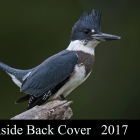 """ Bold Belted Kingfisher "" ..Moira Ontario Canada"